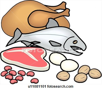 Protein Food Group Clipart   Clipart Panda   Free Clipart Images