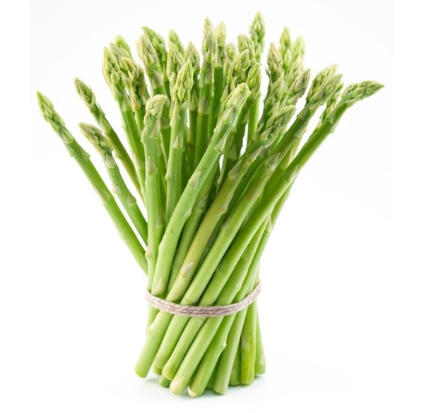 Asparagus Full   Free Images At Clker Com   Vector Clip Art Online