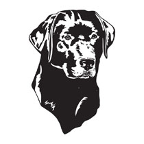 Black Labrador Dog Head Clip Art For Pet Engraved Products