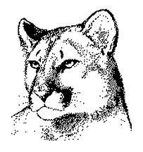 Image result for cougar clipart
