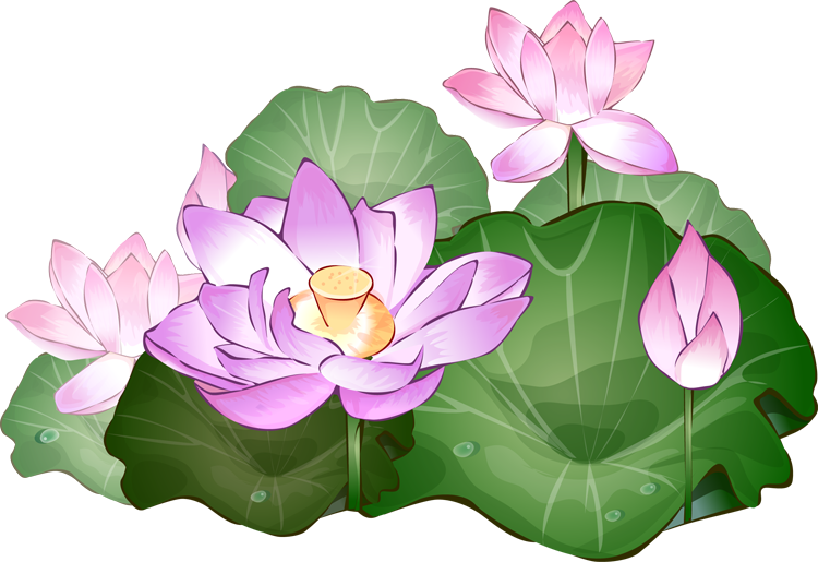Clip Art Lotus Flower Clipart lotus flower clipart kid 38 free cliparts that you can download to you