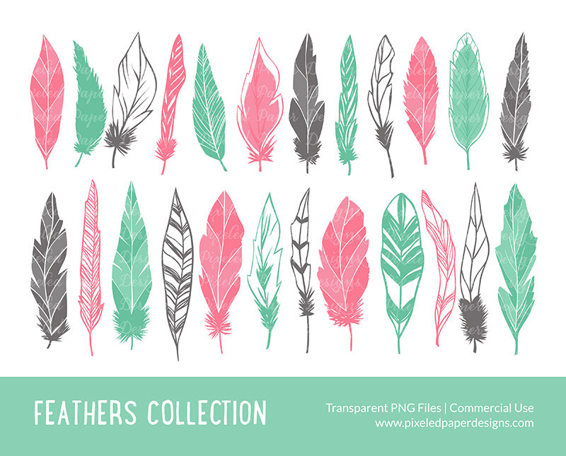 Feather Clip Art  Feather Digital Clipart By Pixeledpaperdesigns