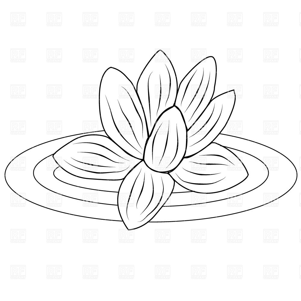 Lotus Flower Clipart - Clipart Kid