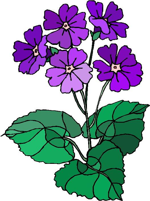 clip-art-plants-clip-art-DkqQiH-clipart.jpg