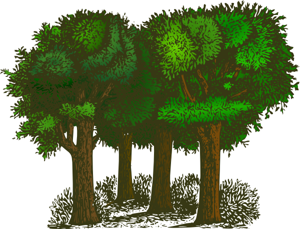 Group Of Trees Clip Art At Clker Com   Vector Clip Art Online Royalty
