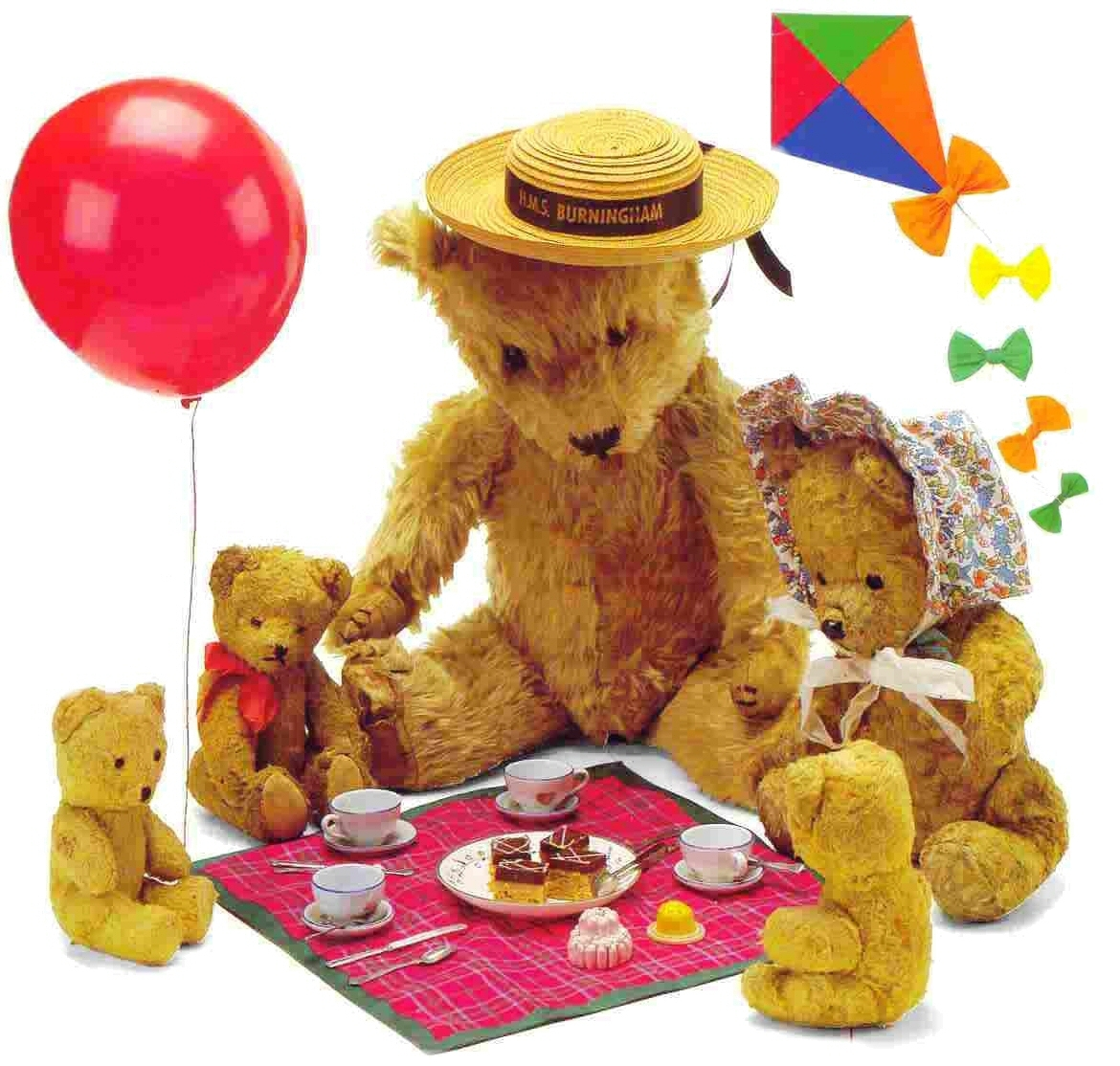 Picnic Party  Teddy Bear Picnic Party