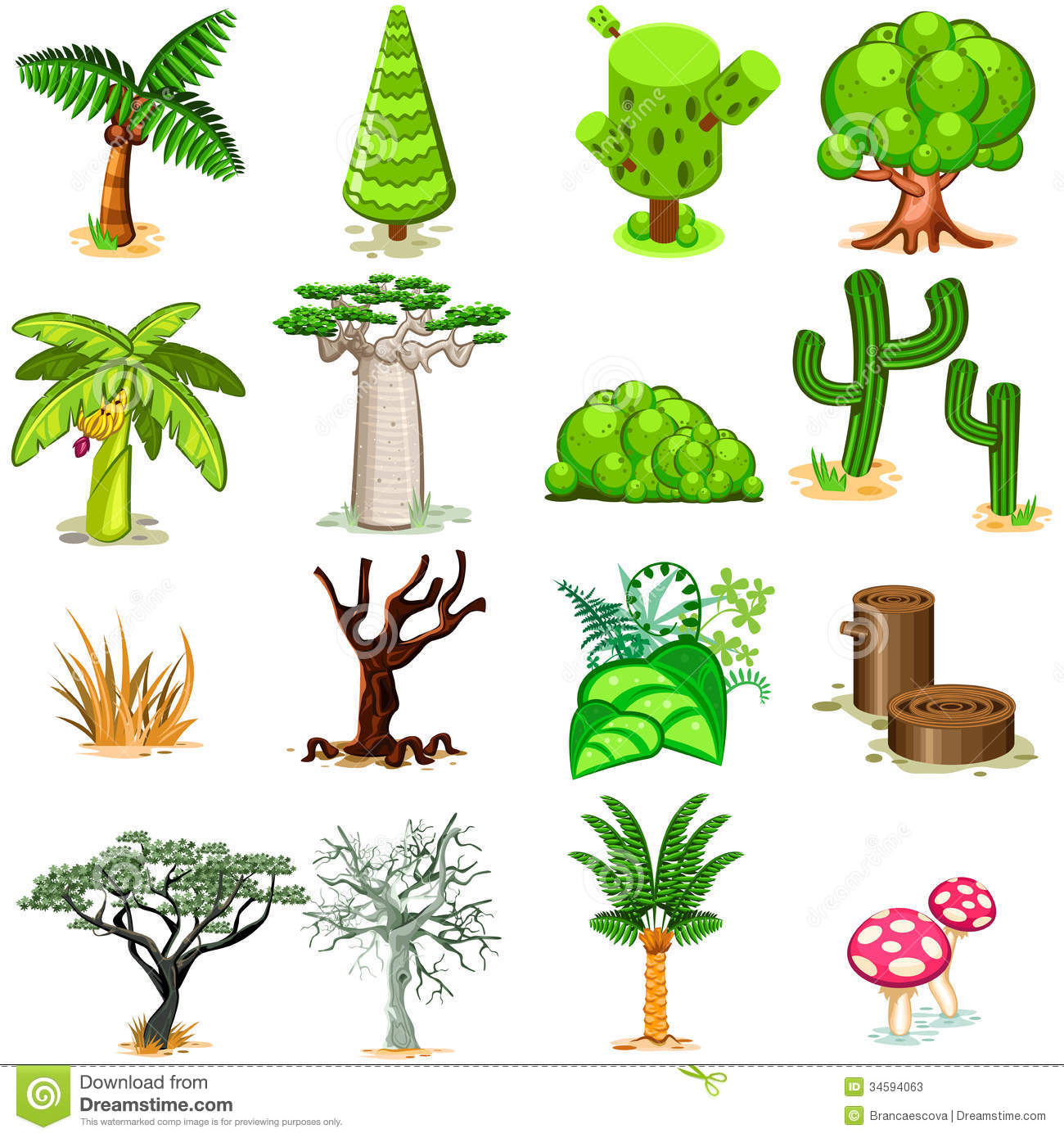 Various Green Rainforest Dessert Swamp Trees Vector Illustration