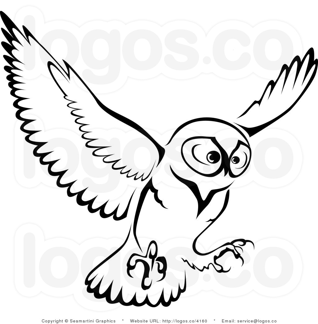 Flying owl drawings black and white - photo#5