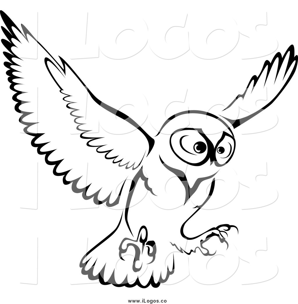 Flying owl drawings black and white - photo#13