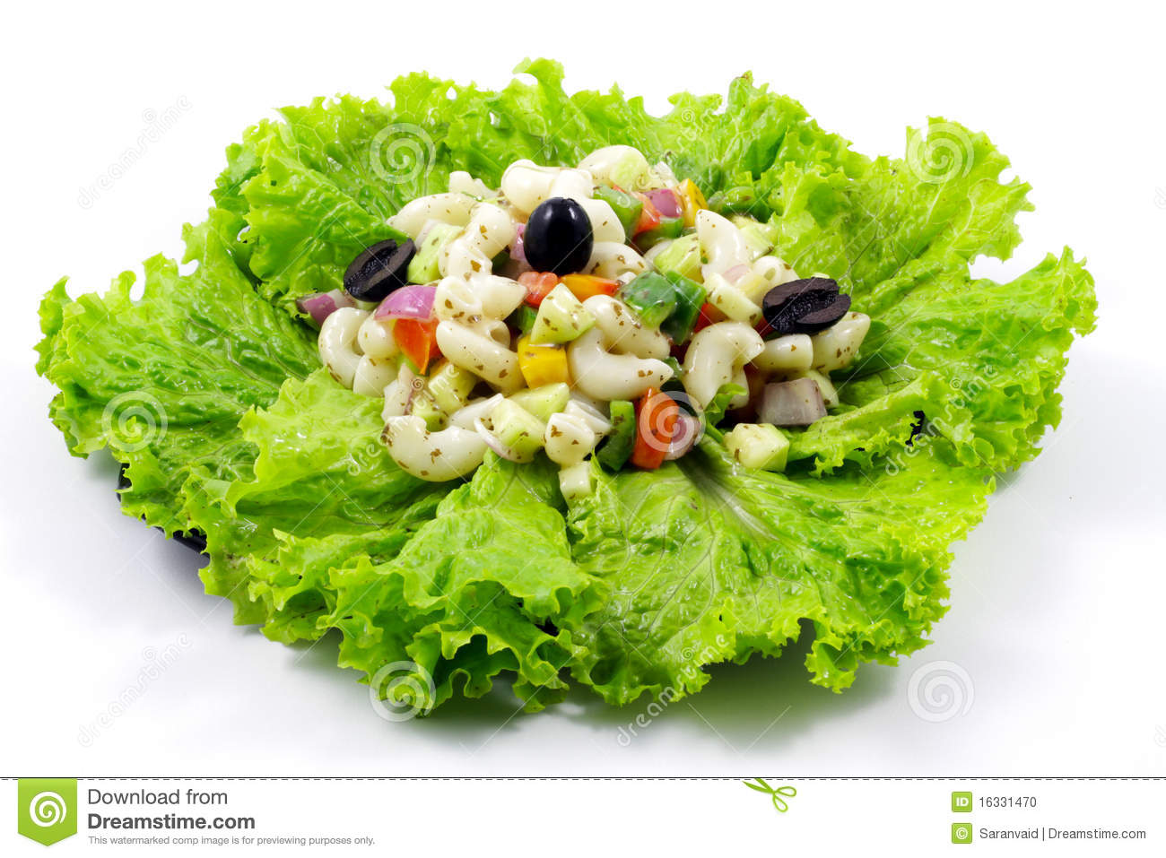 Macaroni Salad Stock Photo   Image  16331470