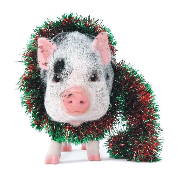 Merry Xmas Sweet   Christmas Pigs And New Year   Pinterest