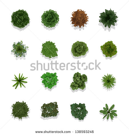 Trees Top View For Landscape Vector Illustration   Stock Vector