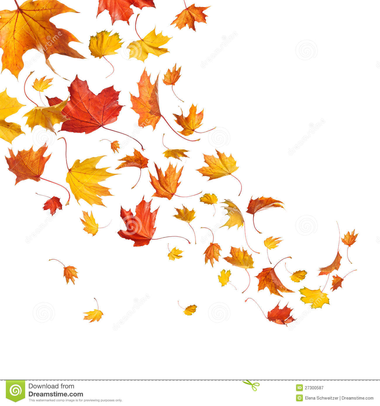 Autumn Falling Leaves Royalty Free Stock Photography   Image  27300587