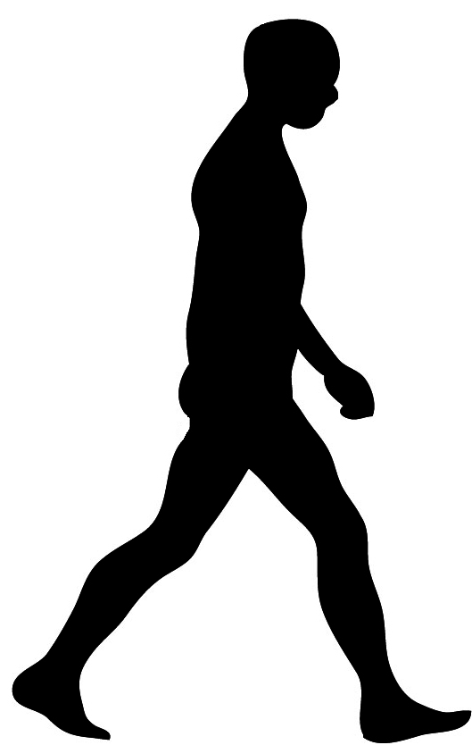 Black Silhouette Man Walking