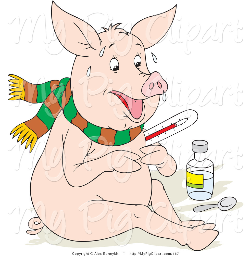 File Name   Swine Clipart Of A Sick Pig With The Flu Sweating Holding