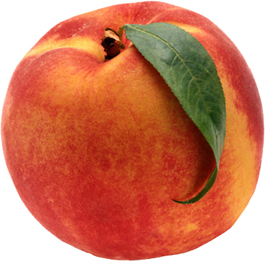 Grow A Farmer   Eat A Peach