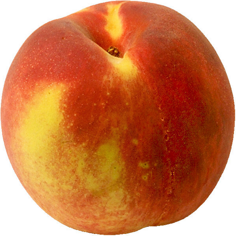 Nectarine   Originated As A Mutant From Peach With Smooth Skin  Seed