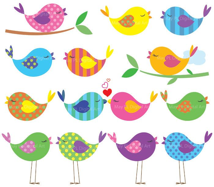 Bird Clipart Cute Birds Commercial Use Digital Animal Clipart Colorful