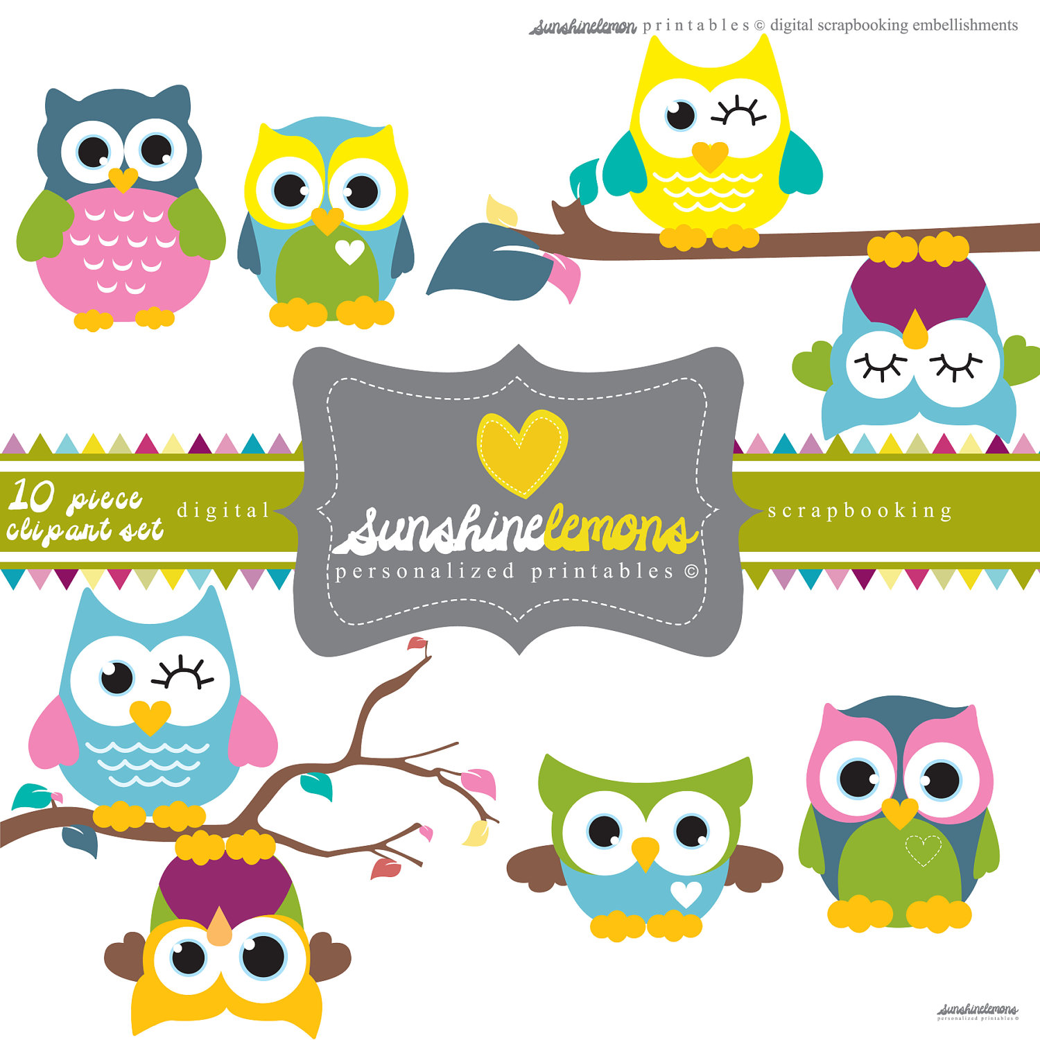 Cute Owl Clipart 10 Piece Clipart Set By Sunshinelemons On Etsy