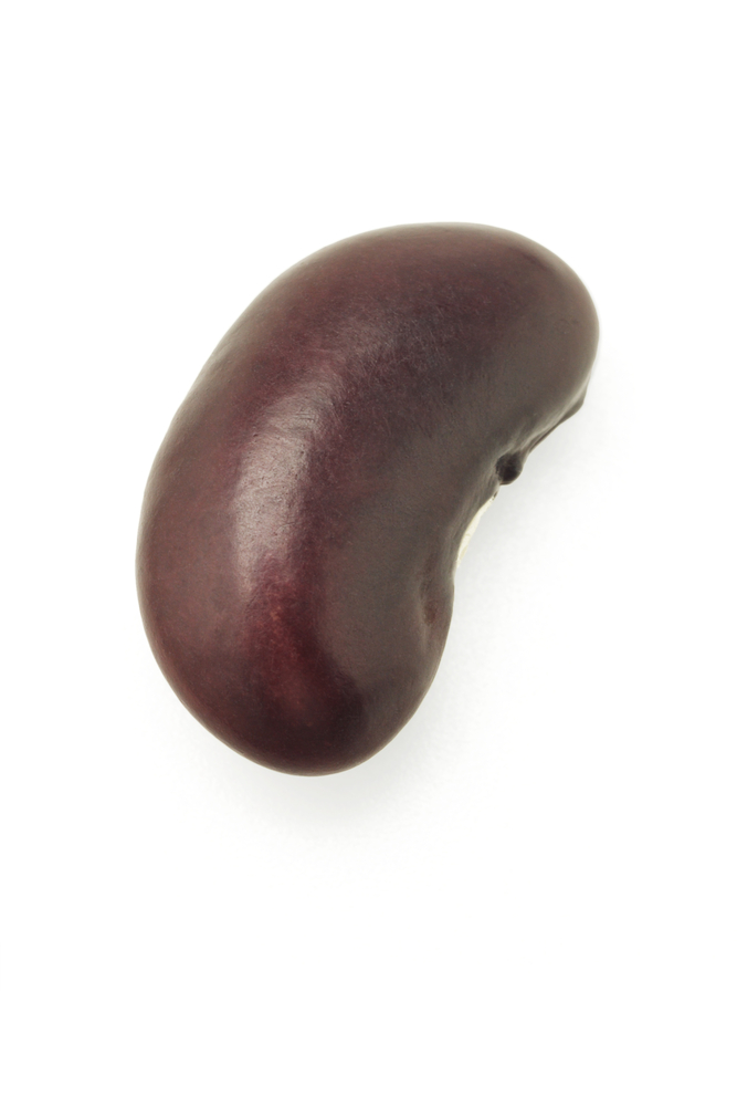 Kidney Beans Provide Your Daily Diet With An Excellent Source Of