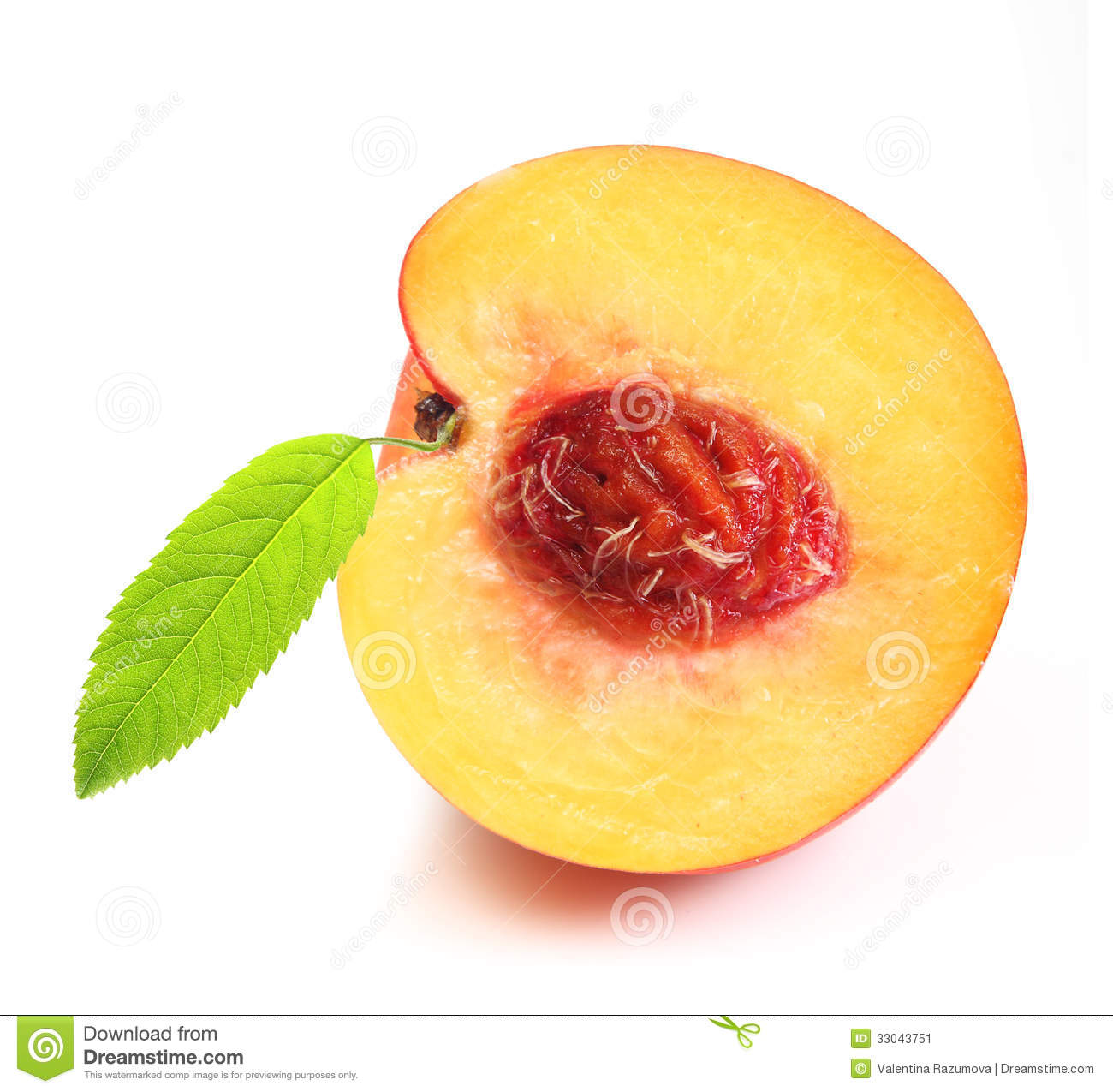 Peach Slice Stock Image   Image  33043751