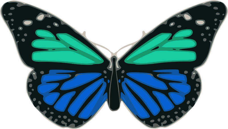 turquoise clipart clipart suggest