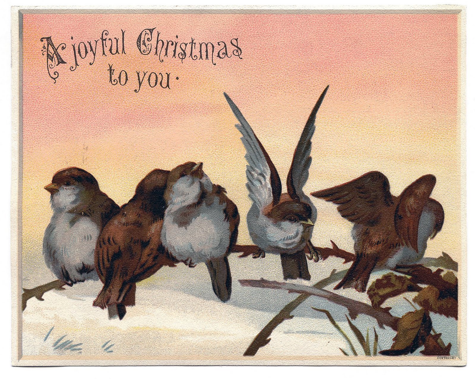 Retro Christmas Bird Clipart - Clipart Kid
