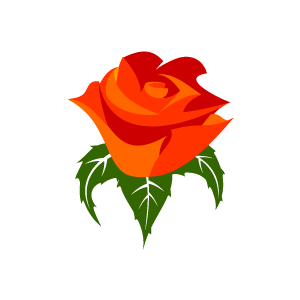 Clipart Contact Us Flower Clipart Orange Rose With White Background