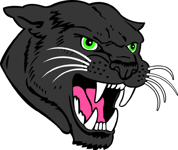 Panther Head1 Jpg