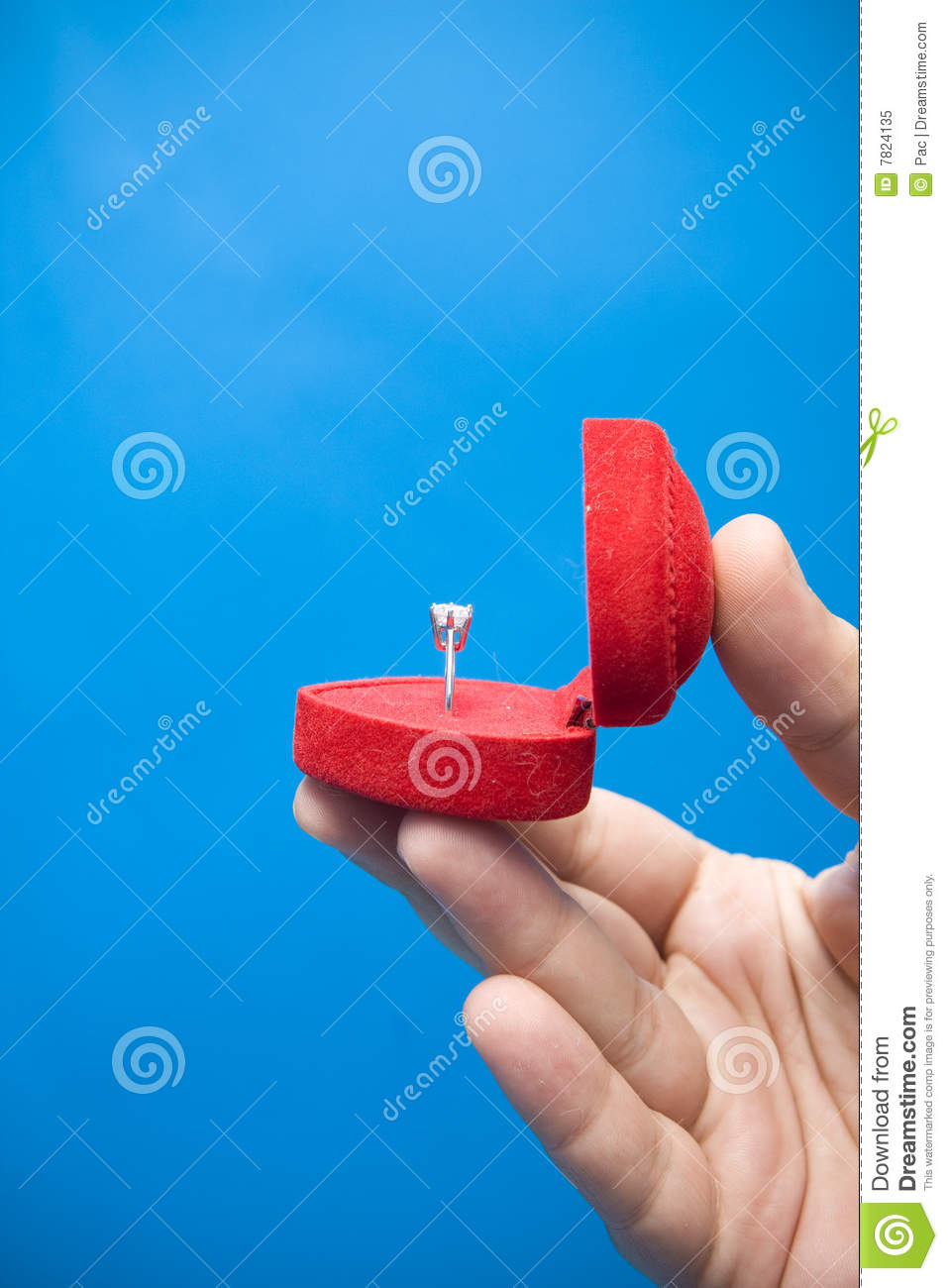 Marriage Proposal Royalty Free Stock Photo   Image  7824135