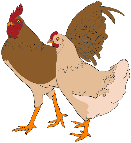 Description Rooster And Hen Clipart 01 Svg