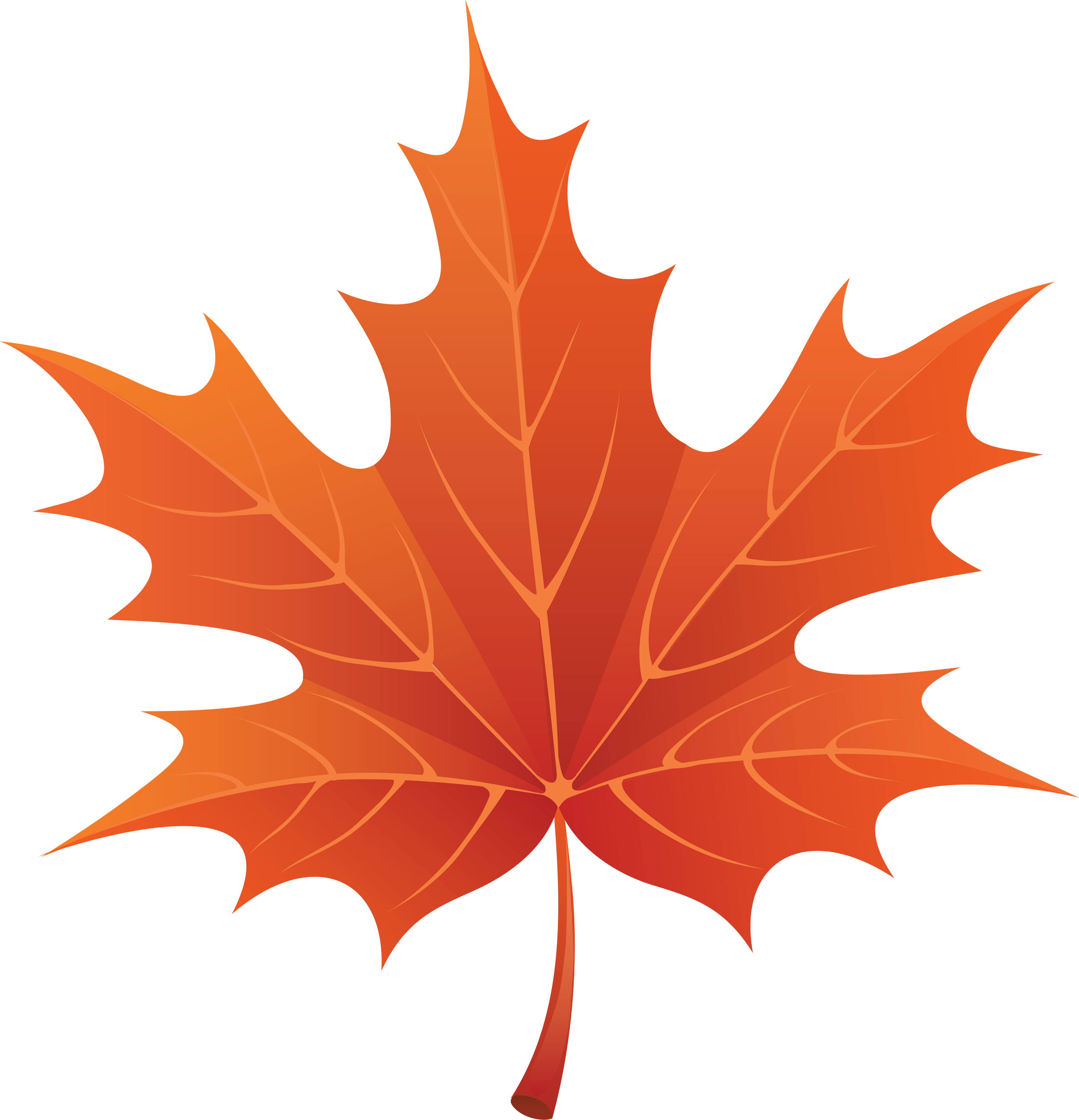 Clip Art Maple Leaf Clipart maple leaves clipart kid download png image leaf