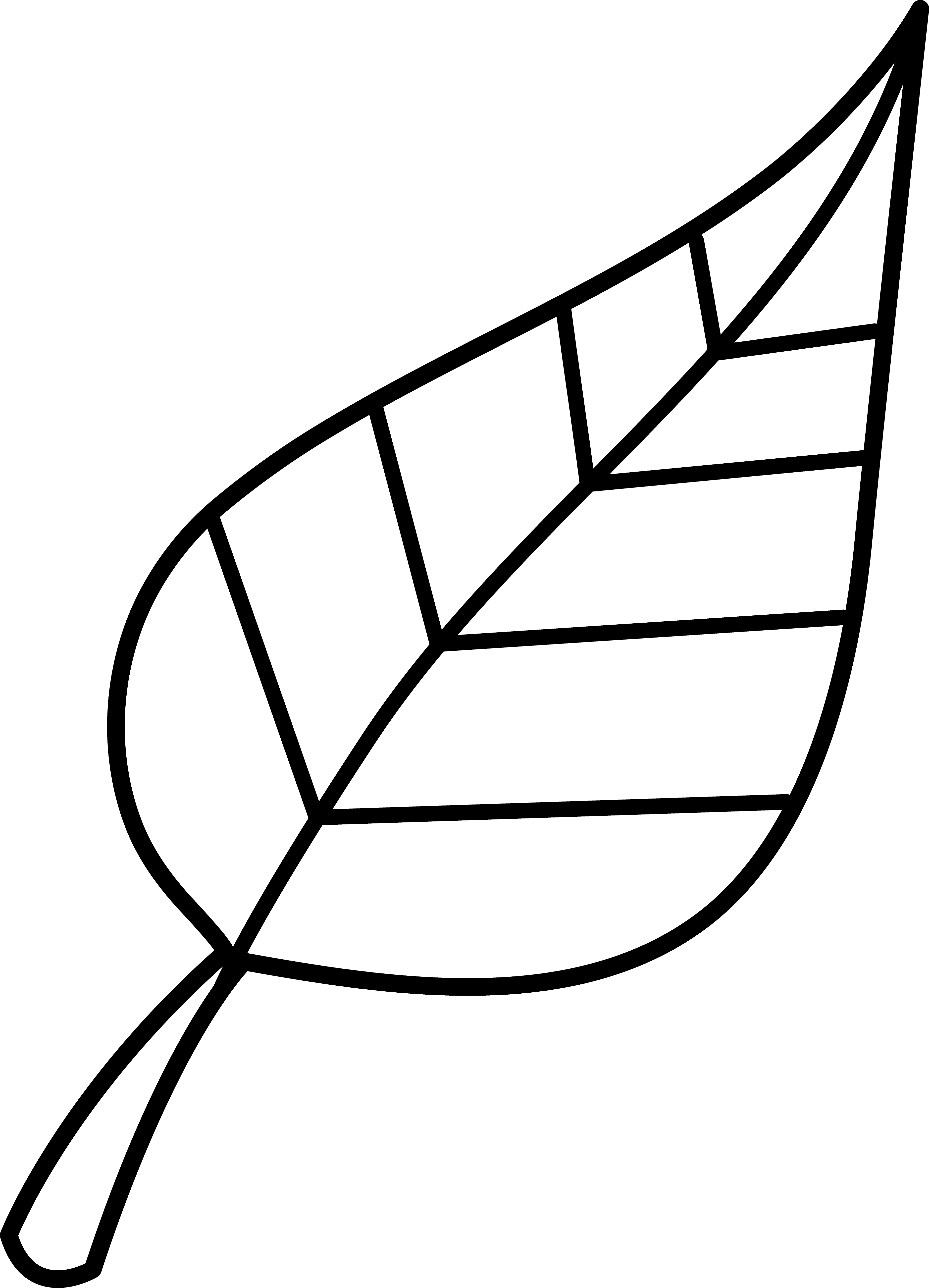 Black And White Leaf Clipart - Clipart Suggest