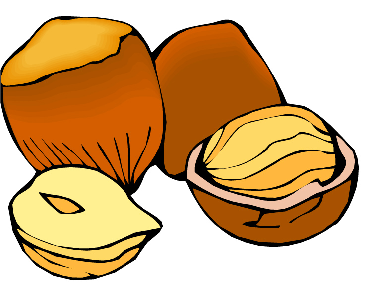 Nut   Clipart Best