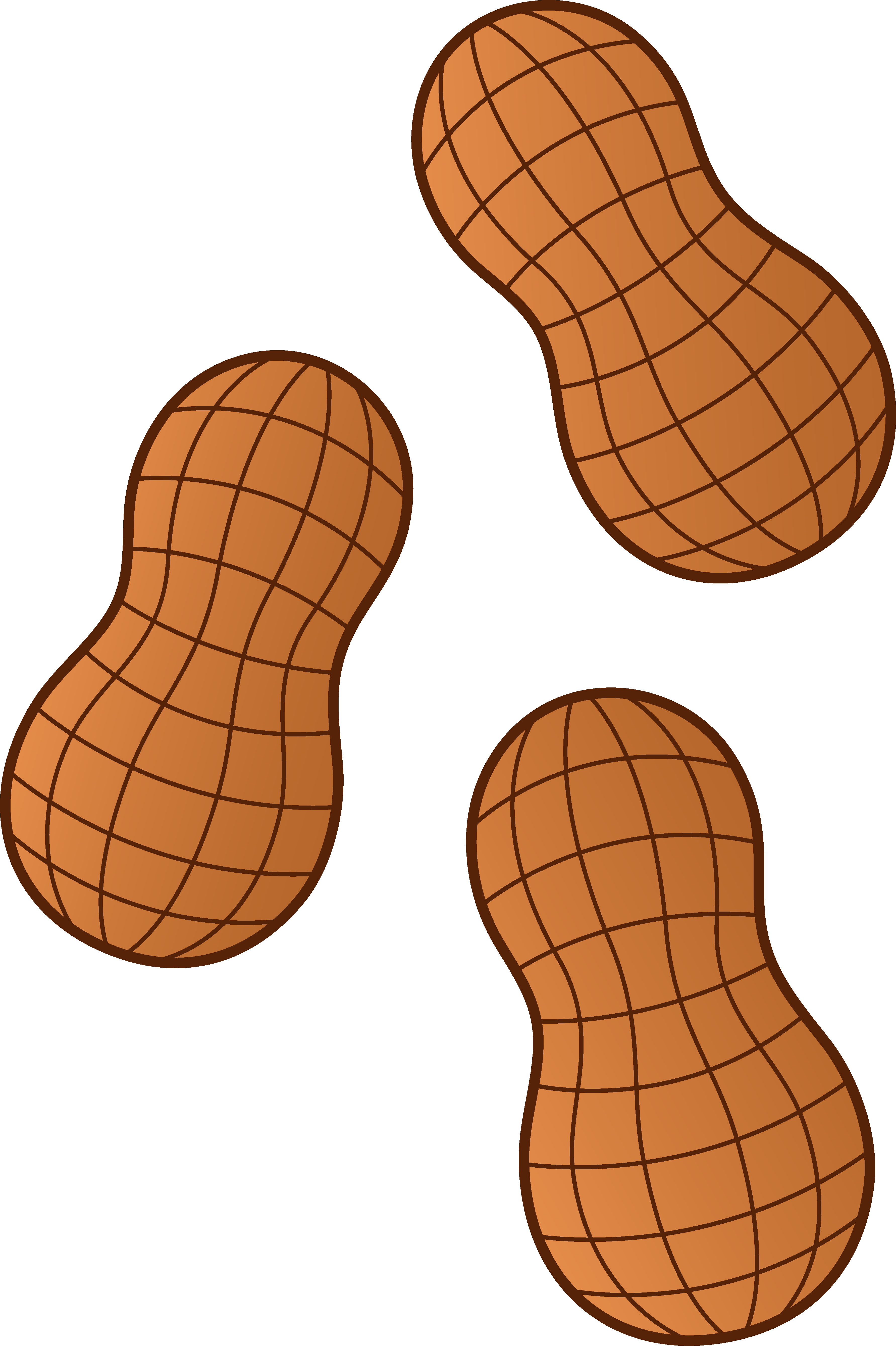 Nut Clipart Peanuts Png