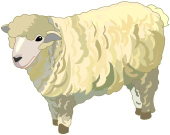 Clip Art Of A Fluffy Wooly White Sheep Standing