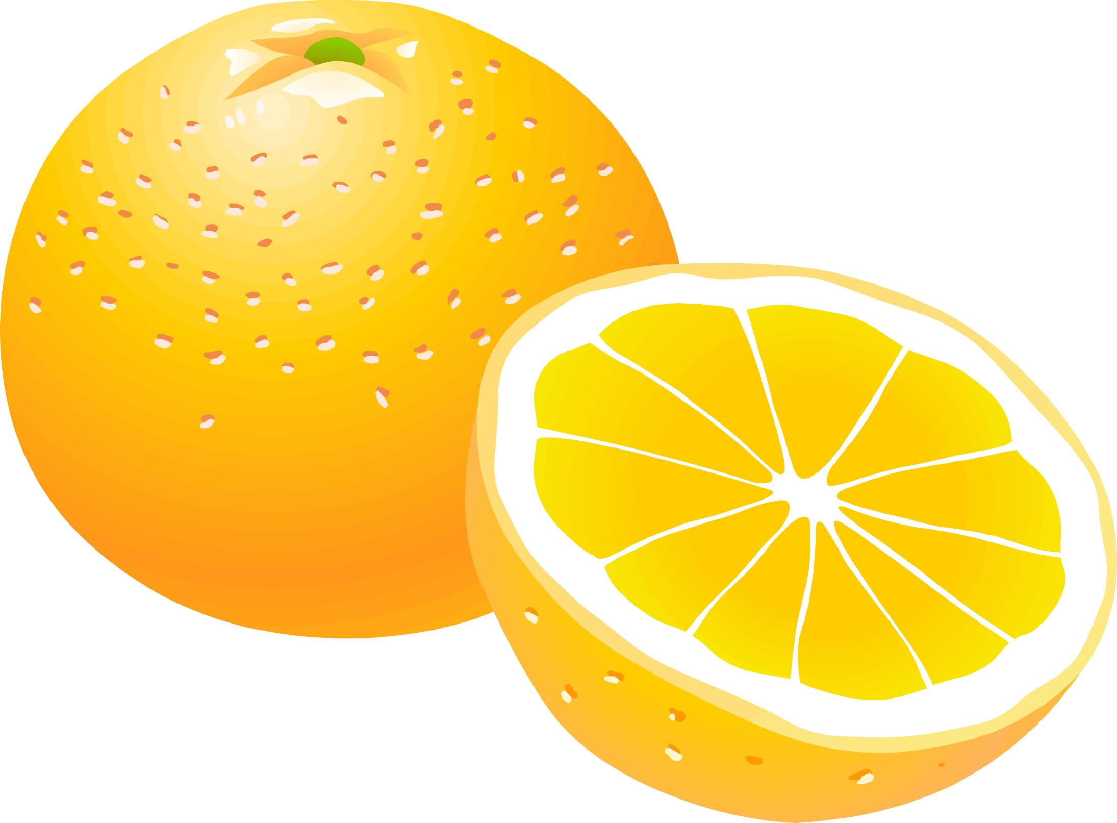 orange clipart clipart suggest orange clipart funny oranges clip art free
