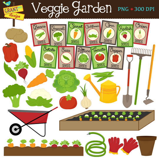 Vegetable Clipart   Garden Clipart   Gardening Graphics