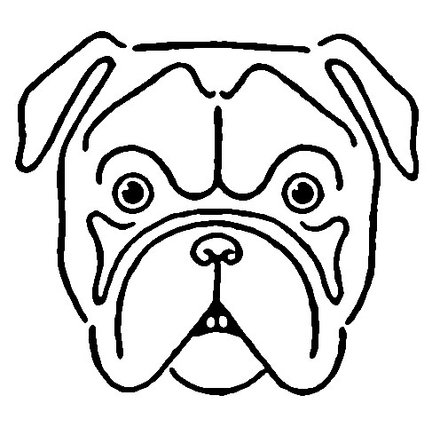 Bulldog Face Drawing Avintage Kids Printable Draw A Bulldog The