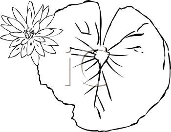 Lily Pad Clipart Black And White Flower Clipart