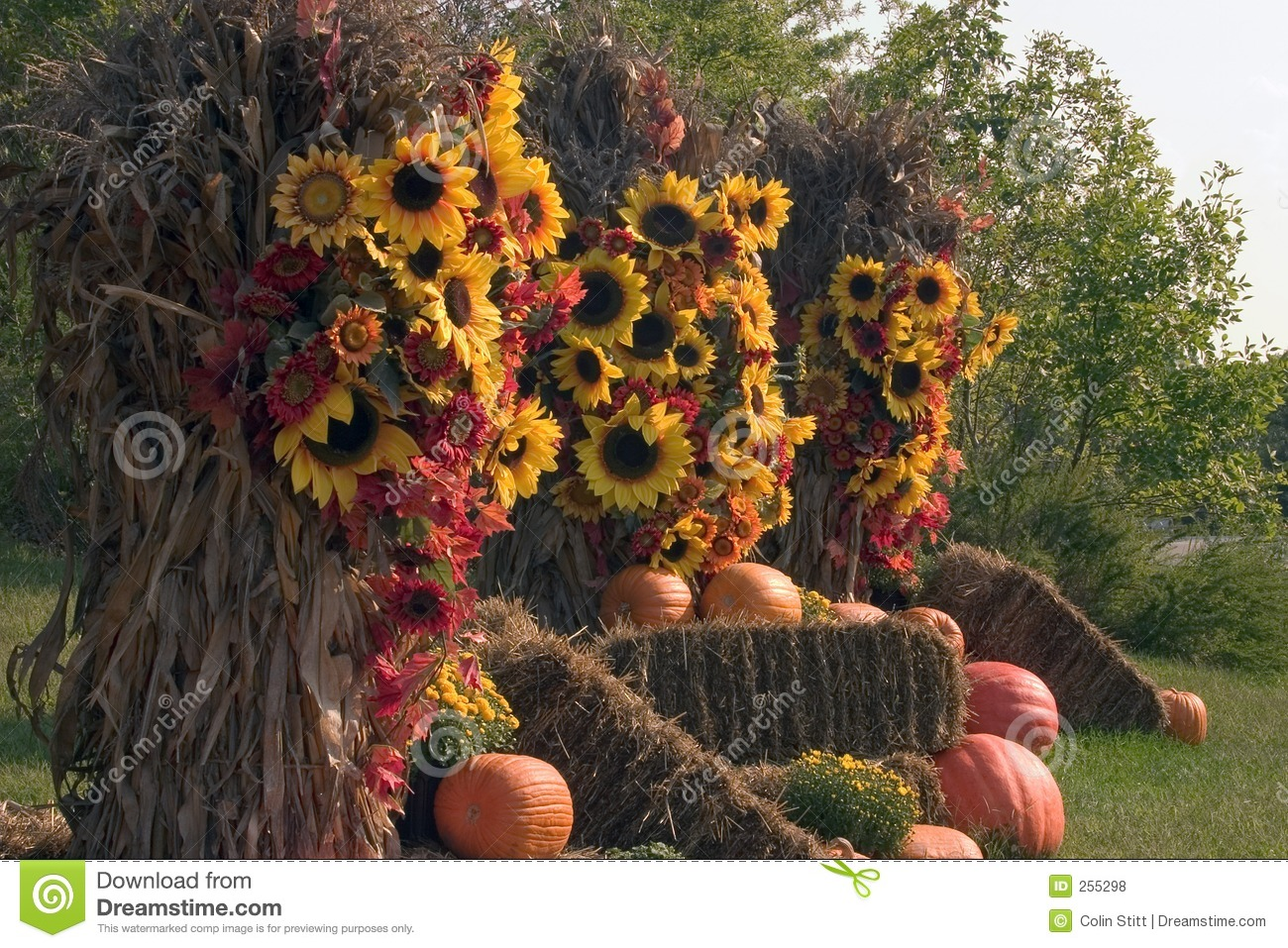 Royalty Free Stock Photos  Fall Decorations