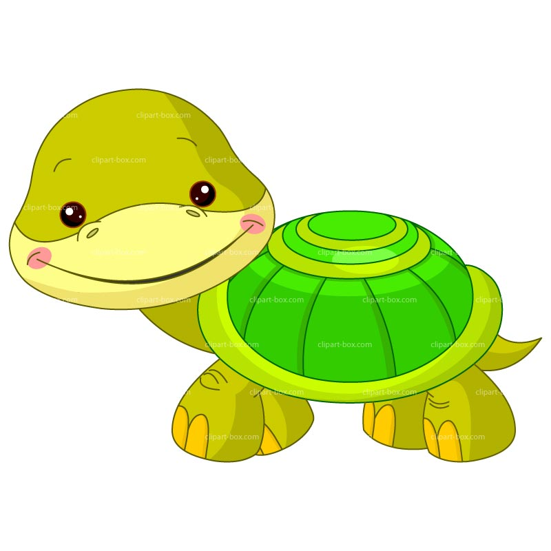 Clipart Baby Turtle   Royalty Free Vector Design