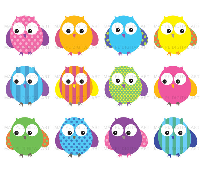 Owls Clip Art Cute Bright Bold Colored Digital By Maypldigitalart
