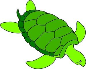 Clip Art Clip Art Turtle turtle clipart kid clip art images sea stock photos turtle