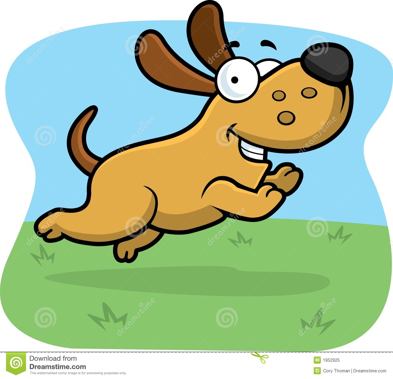 Jumping Dog Royalty Free Stock Photo   Image  1952925