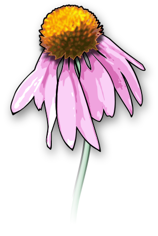 Www Wpclipart Com Plants Flowers No Name Wilting Flower Png Html