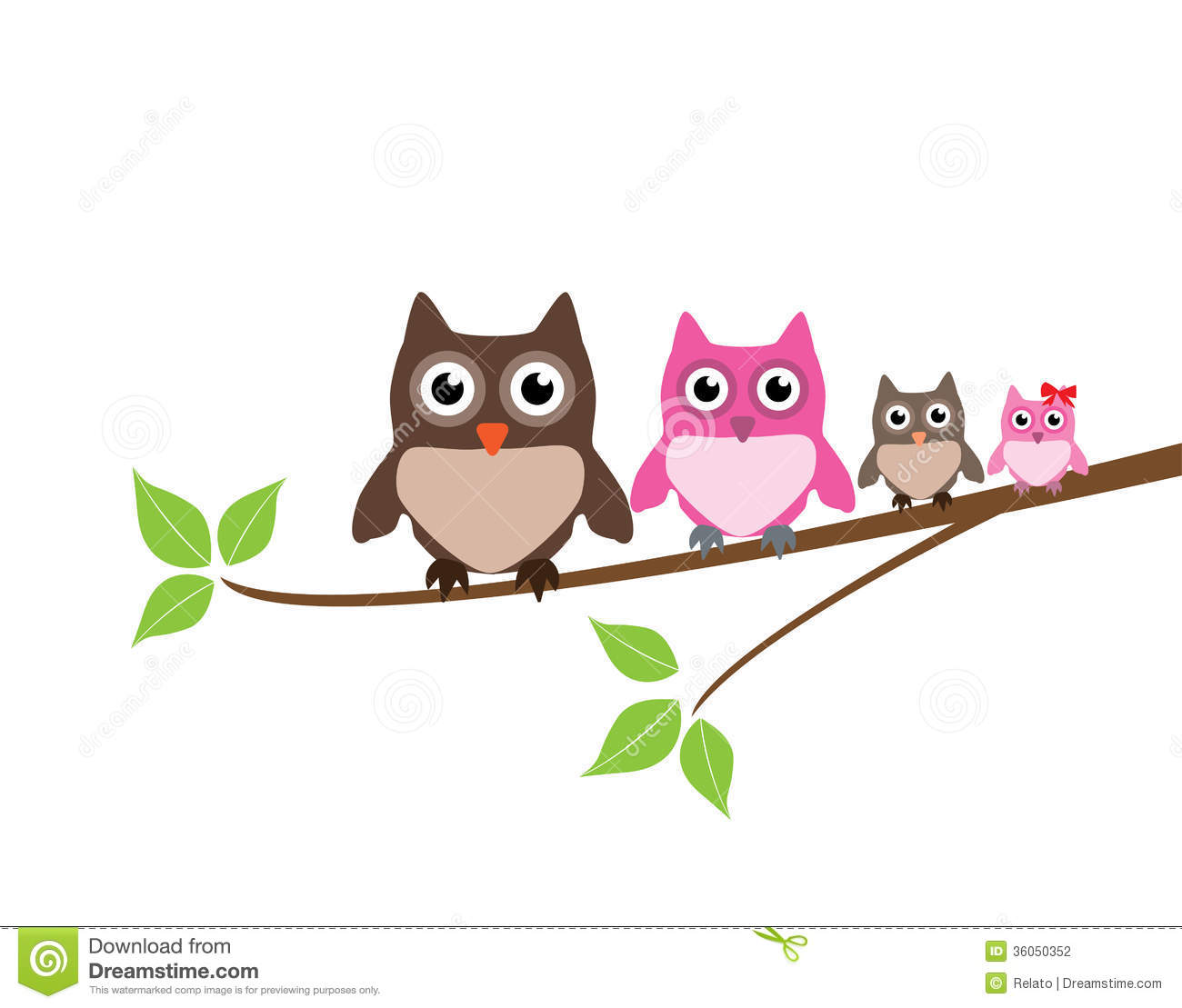 Owl Family Stock Photography   Image  36050352