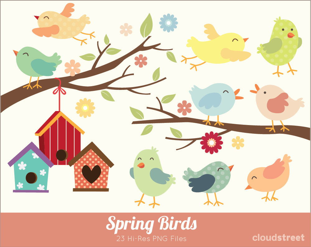 Cute Baby Bird Clipart Use   Cute Birds Clip Art