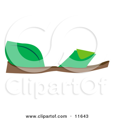 Flat Green Sandals Clipart Picture By Geo Images