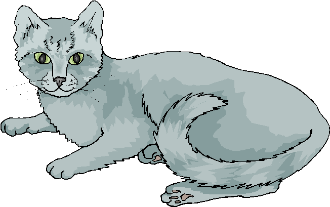 Funny Grey Cat Laying On A Floor Free Clipart   Free Microsoft Clipart